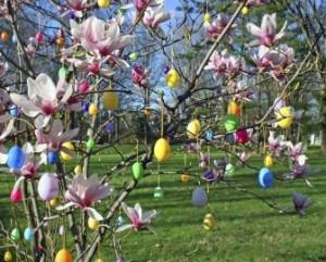 Olanda uova appese all'albero del giardino