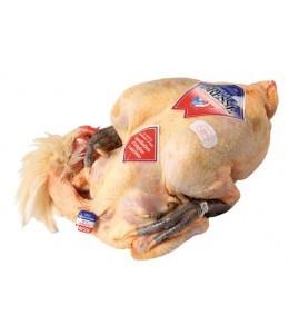 pollo-di-bresse-dop-