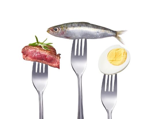 carne- contro pesce-uova