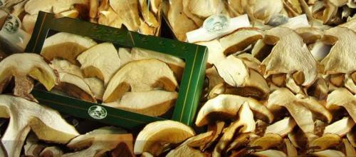 i nostri funghi porcini  secchi